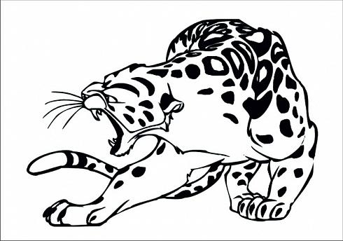 Leopard face outline